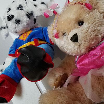 Stuff a Bear Party