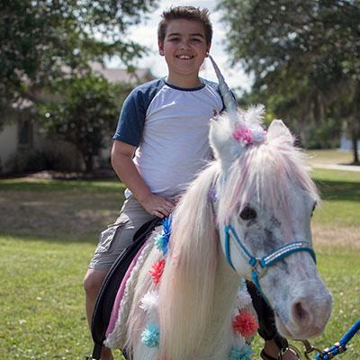 Pretty Riding Pony